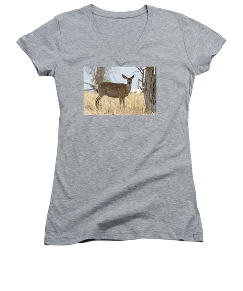 Watching From The Woods Women's V-Neck T-Shirt (Junior Cut) by James BO Insogna