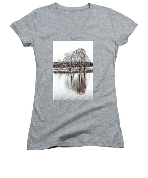 Water And Trees Women's V-Neck T-Shirt