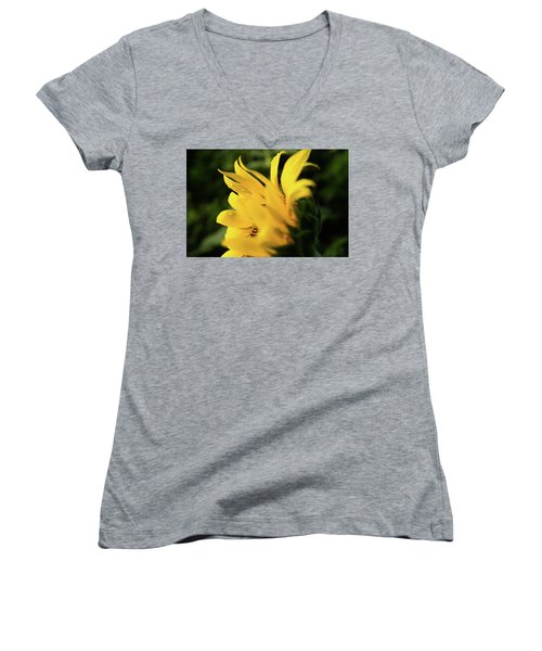 Water Drops And Sunflower Petals Women's V-Neck