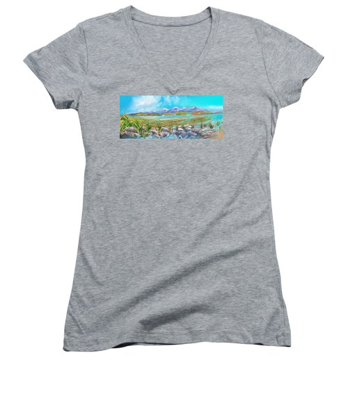 Water For Irrigation  Women's V-Neck T-Shirt