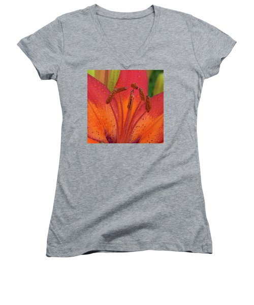 Women's V-Neck T-Shirt (Junior Cut) featuring the photograph Watered Lily by Jean Noren