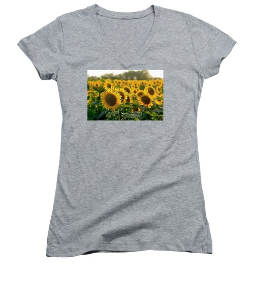 Waving Sunflowers In A Field Women's V-Neck T-Shirt (Junior Cut) by Karen McKenzie McAdoo