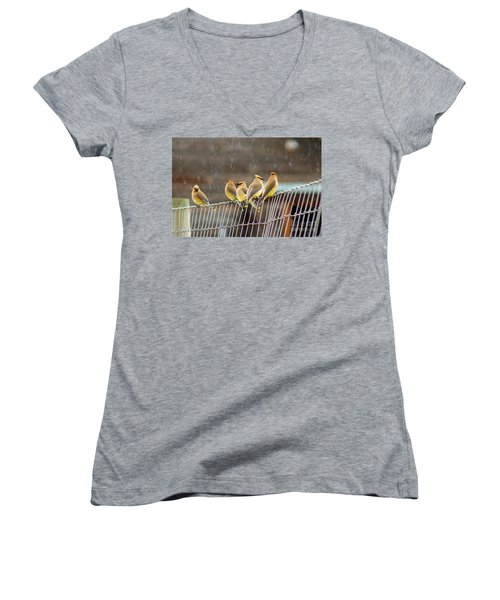 Waxwings In The Rain Women's V-Neck T-Shirt (Junior Cut)