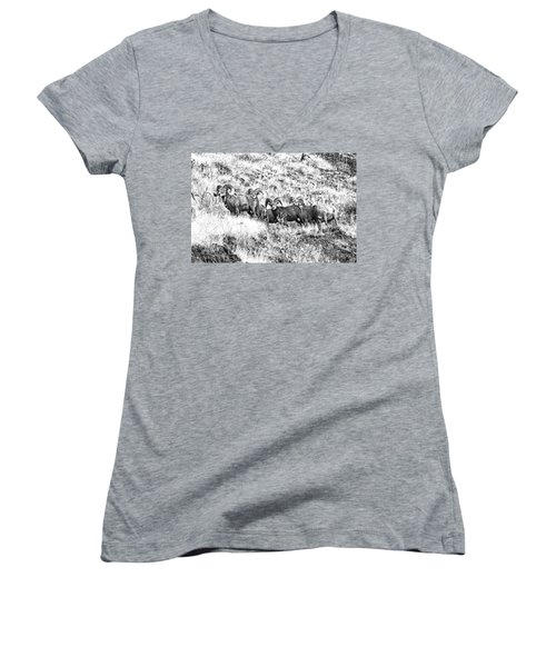 We Have A Visitor Women's V-Neck T-Shirt (Junior Cut) by Steve Warnstaff