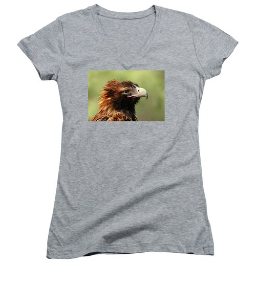 Wedge-tailed Eagle Women's V-Neck T-Shirt (Junior Cut) by Marion Cullen