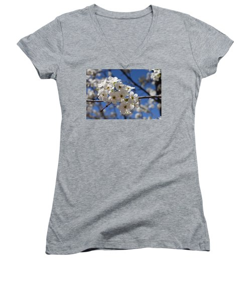 Welcome Colorado Spring Women's V-Neck T-Shirt