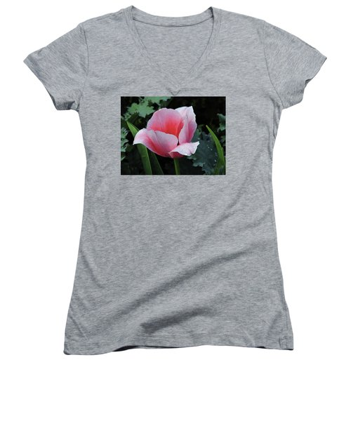 Welcome Tulip Women's V-Neck T-Shirt (Junior Cut) by Penny Lisowski
