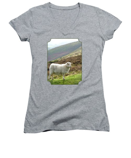 Welsh Mountain Sheep Women's V-Neck T-Shirt (Junior Cut) by Gill Billington
