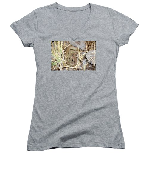 Western Yellow-bellied Racer, Coluber Constrictor Women's V-Neck