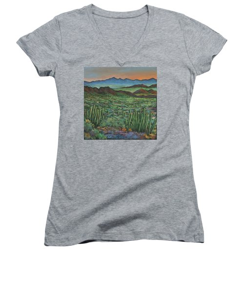 Westward Women's V-Neck T-Shirt (Junior Cut) by Johnathan Harris
