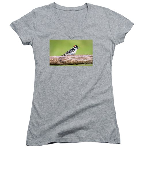 Women's V-Neck T-Shirt featuring the photograph Wet Downy Woodpecker  by Ricky L Jones