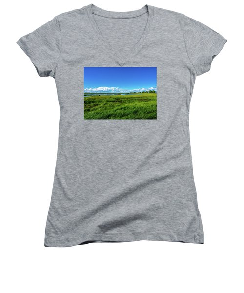 Wetlands On A Windy Spring Day Women's V-Neck (Athletic Fit)