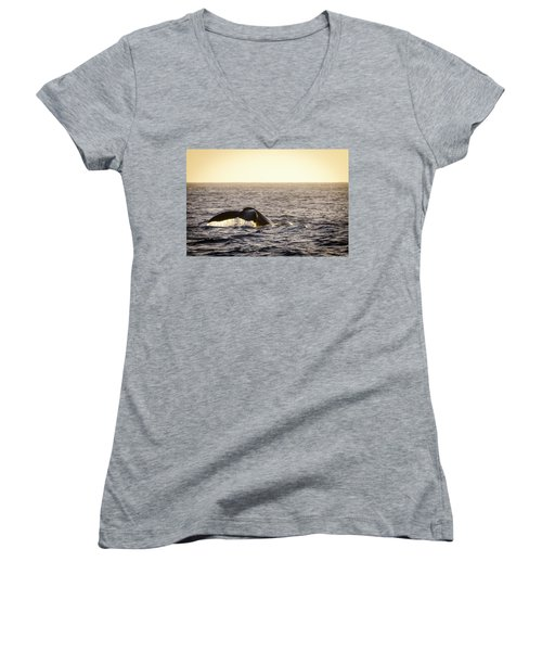 Whale Fluke Women's V-Neck T-Shirt