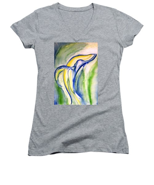Whale Women's V-Neck T-Shirt (Junior Cut) by Sheridan Furrer