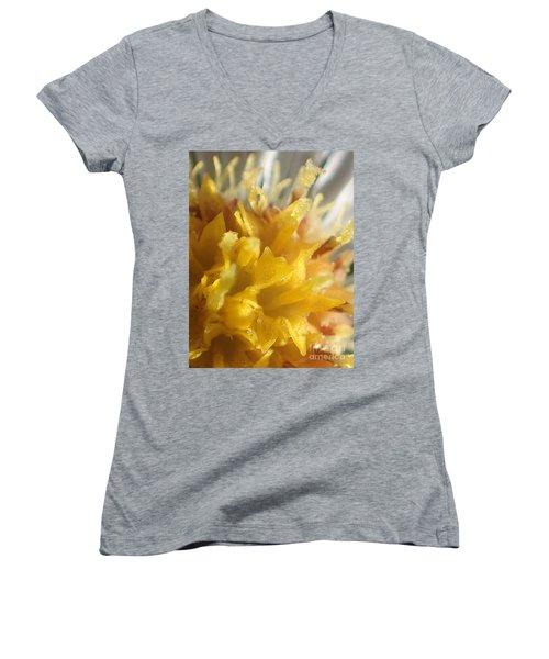 What Am I - #2 Women's V-Neck T-Shirt (Junior Cut) by Christina Verdgeline