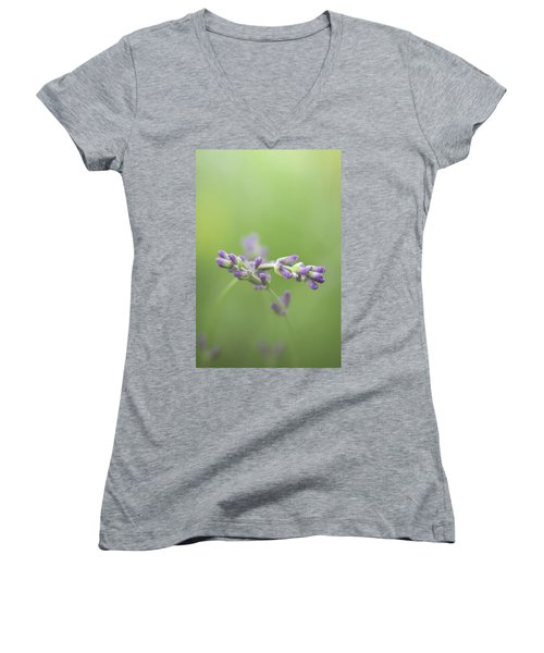 What Friends Are For Women's V-Neck T-Shirt (Junior Cut) by Peter Scott