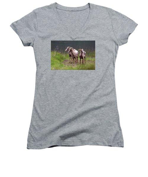 Whats Next Women's V-Neck T-Shirt