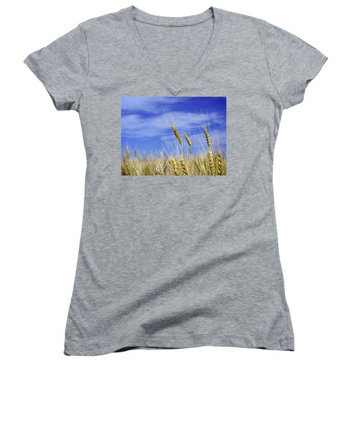 Wheat Trio Women's V-Neck T-Shirt (Junior Cut) by Keith Armstrong