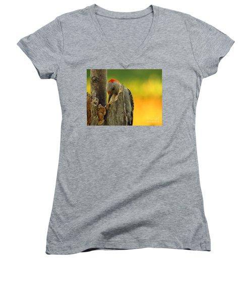 Where Did It Go Women's V-Neck T-Shirt