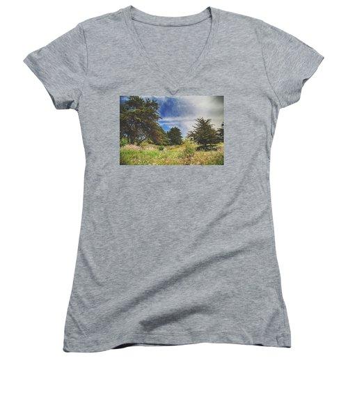 Where Fairies Play Women's V-Neck T-Shirt (Junior Cut) by Laurie Search