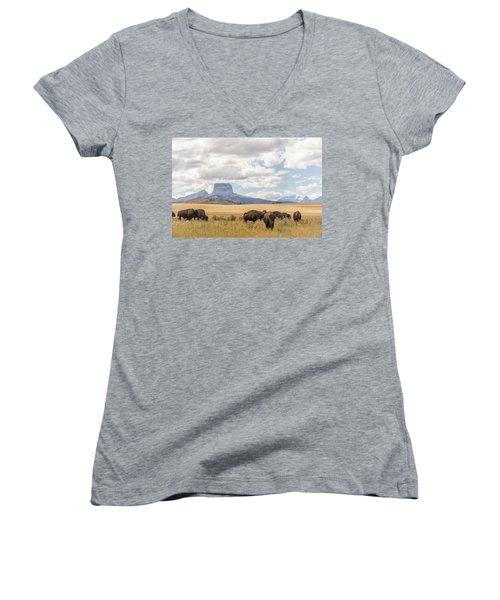 Where The Buffalo Roam Women's V-Neck T-Shirt (Junior Cut) by Alex Lapidus