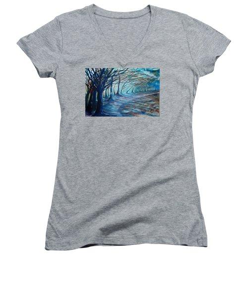 Whisper Women's V-Neck T-Shirt