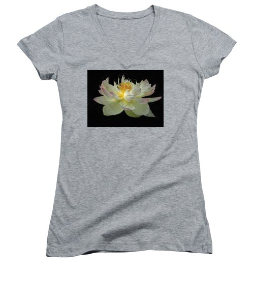 White And Pink Floral Women's V-Neck