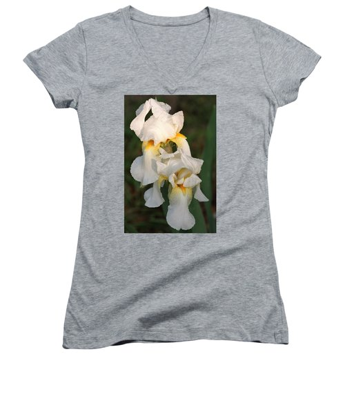 Women's V-Neck T-Shirt (Junior Cut) featuring the photograph Two White Bearded Iris At Dusk by Sheila Brown