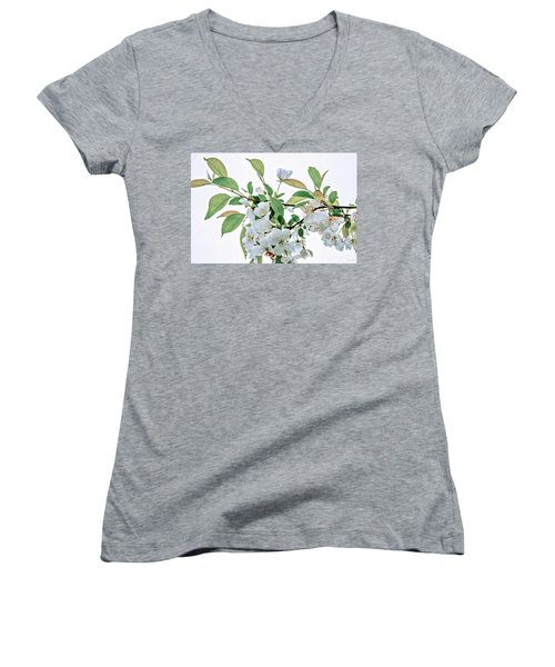 Women's V-Neck T-Shirt (Junior Cut) featuring the photograph White Crabapple Blossoms by Skip Tribby