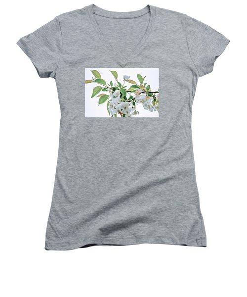 White Crabapple Blossoms Women's V-Neck (Athletic Fit)