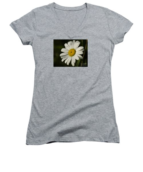 White Daisy Flower Women's V-Neck T-Shirt (Junior Cut) by JT Lewis