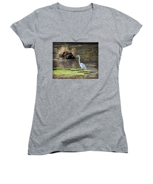 White Egret In The Shallows Women's V-Neck (Athletic Fit)