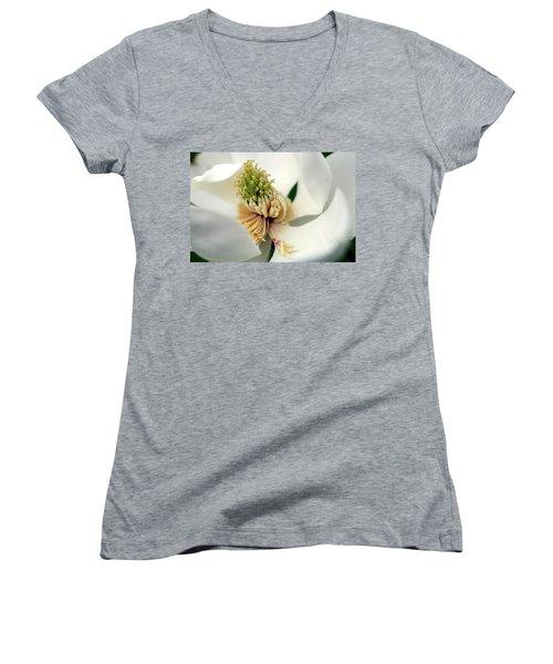 Women's V-Neck T-Shirt (Junior Cut) featuring the photograph Magnolia Blossom by Meta Gatschenberger