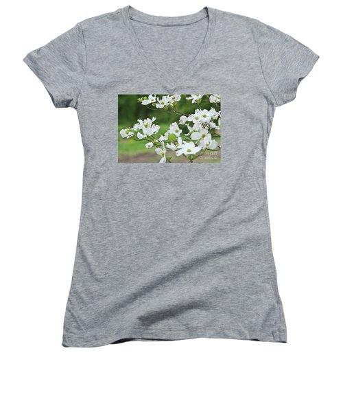 White Flowering Dogwood Women's V-Neck T-Shirt (Junior Cut) by Ann Murphy