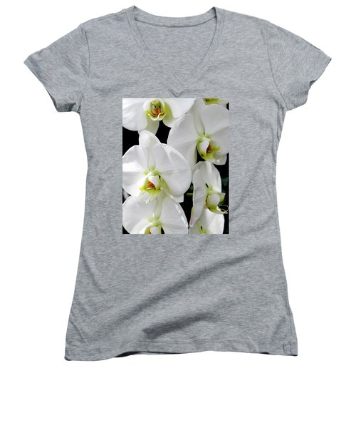 White Orchid Women's V-Neck