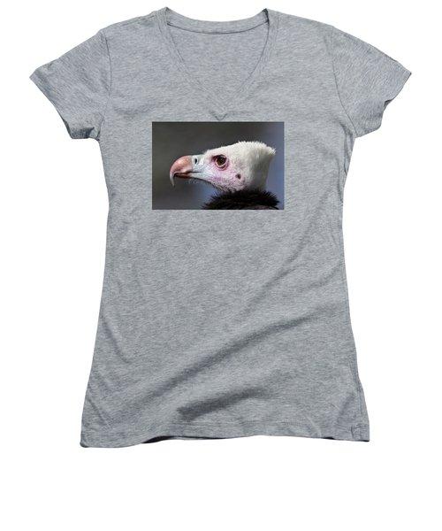 White-headed Vulture Portrait Women's V-Neck (Athletic Fit)