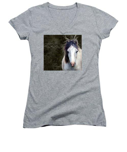 White Horse Women's V-Neck T-Shirt (Junior Cut) by Sebastian Mathews Szewczyk