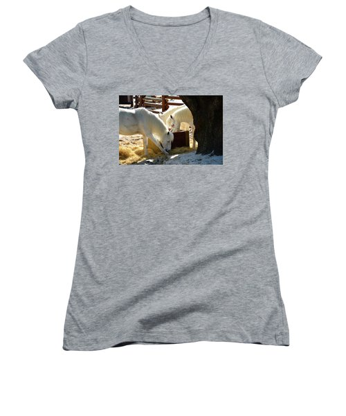 Women's V-Neck T-Shirt (Junior Cut) featuring the photograph White Horses Feeding by David Lee Thompson