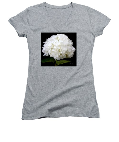 White Hydrangea Women's V-Neck T-Shirt (Junior Cut) by Kume Bryant