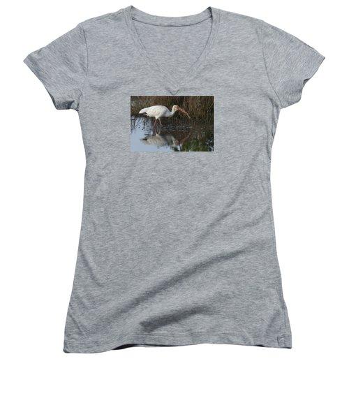 White Ibis Feeding Women's V-Neck
