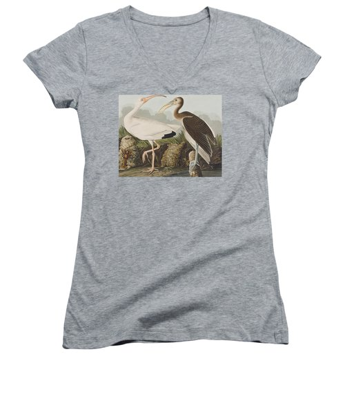 White Ibis Women's V-Neck T-Shirt (Junior Cut) by John James Audubon