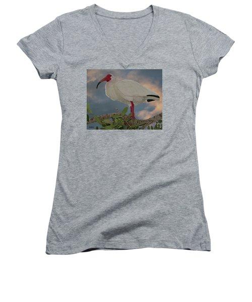 White Ibis Women's V-Neck
