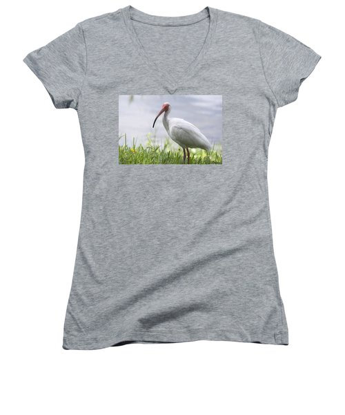 White Ibis  Women's V-Neck T-Shirt (Junior Cut) by Saija  Lehtonen