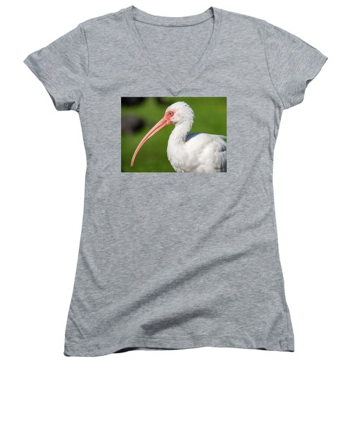 White Ibis Women's V-Neck