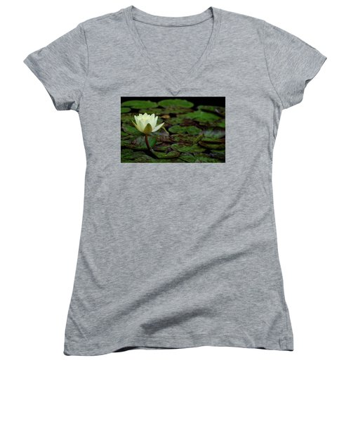 White Lily In The Pond Women's V-Neck T-Shirt