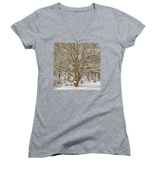 White Oak In Snow Women's V-Neck (Athletic Fit)