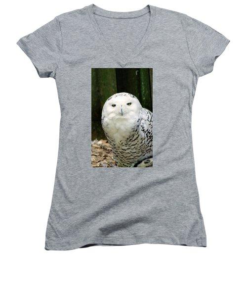 White Owl Women's V-Neck T-Shirt