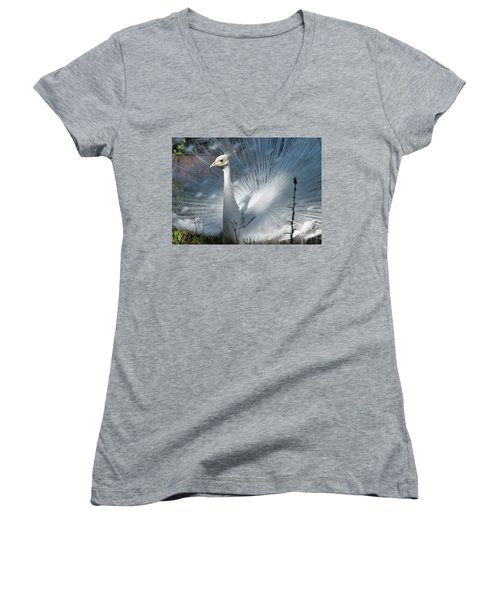 White Peacock Women's V-Neck T-Shirt (Junior Cut) by Lamarre Labadie