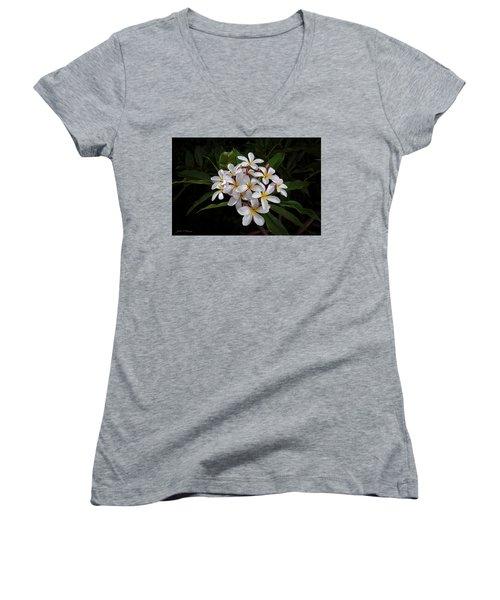 White Plumerias In Bloom Women's V-Neck