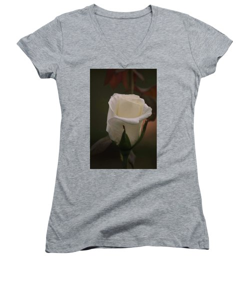 White Rose Women's V-Neck T-Shirt (Junior Cut) by Donna G Smith